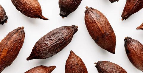 Čokoládou proti stresu a k dobré náladě